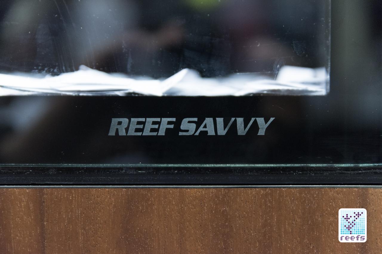 reef savvy tank