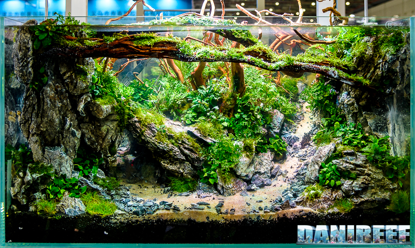 Good Itu0027s Very Hard To Choose One Aquascape For Main Picture Of The Today  Article, Because We Have Seen Some Wonderful Aquariums. CIPS 2017 Has Been  A Continuous ...
