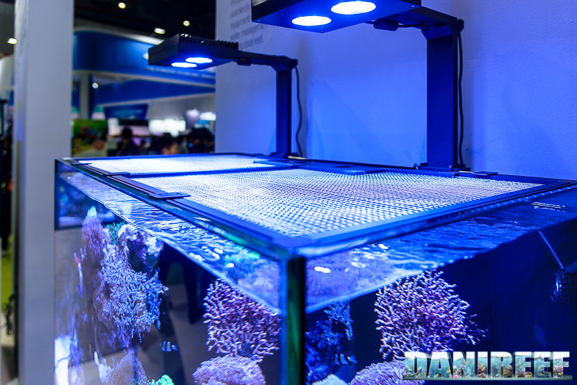 A Net Cover To Prevent Fish Jumping By Red Sea - Reefscom-8876