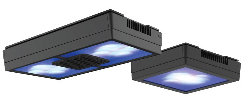 echotech marine xr15 light diffuser