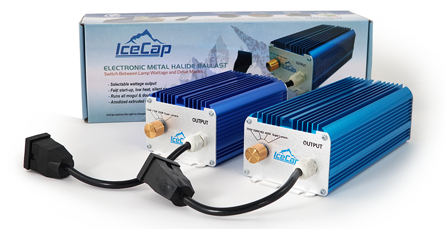icecap metal halide ballast light