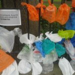Mixed News on Plastic Pollution in UK Waters