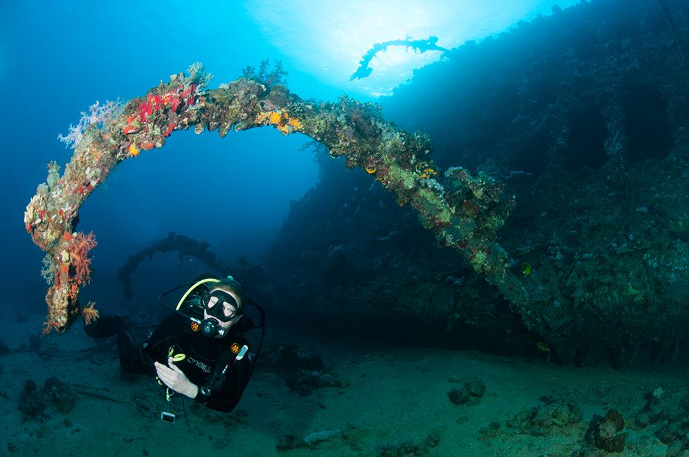 diver, shipwreck
