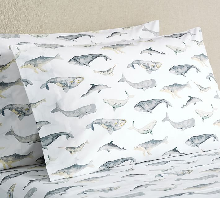 whale, dolphin, sheets, organic
