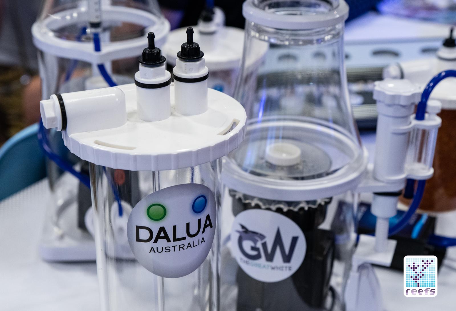 Dalua Australia great white skimmer