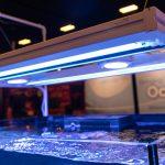 MACNA 2018 Las Vegas: Aquatic Life Hybrid Mounting Fixture