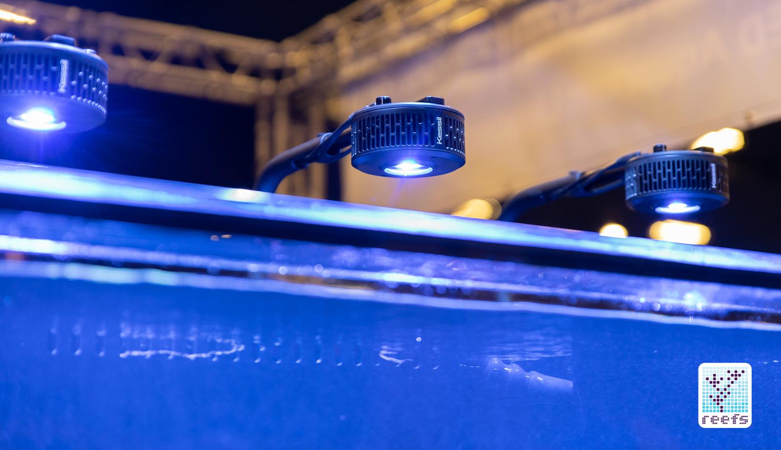 Kessil a360x light