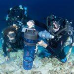 MACNA 2018 : Introducing the Master of Deep Sea Collecting, Brian D. Greene