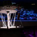 MACNA 2018 Las Vegas: Pax Bellum ARID