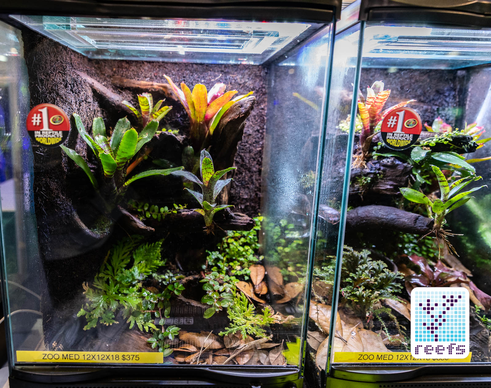 2018 aquatic experience coverage part i best display tanks reefs com