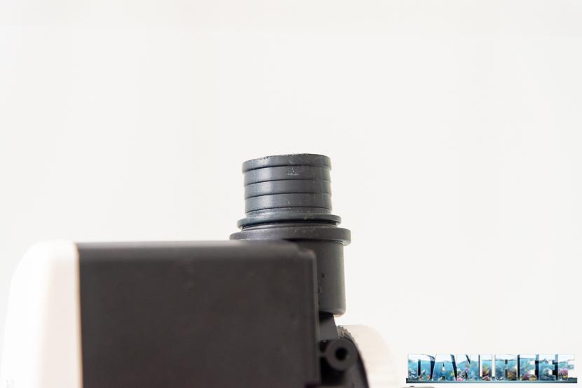 201804-pompa-di-risalita-Riser-rossmont-test-09-Copyright-by-DaniReef