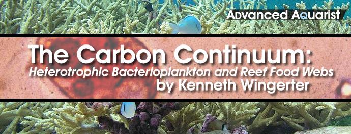 carboncontinuum2.jpg