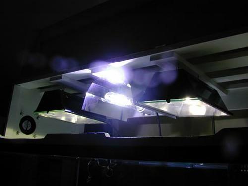 lights2sm.jpg