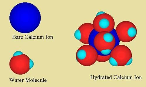 tips-calcium.jpg