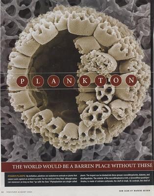 Plankton-Discover.jpg
