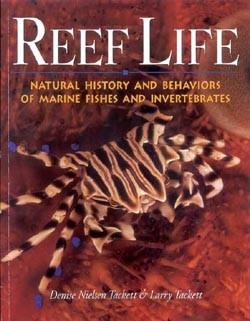reef-life-coverthumb.jpg