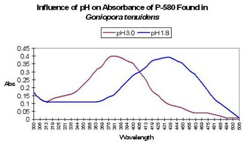 Fig22.JPG