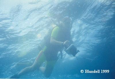 DiverCamera.jpg