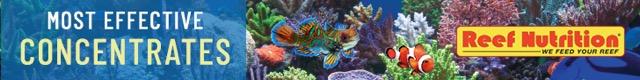 Reef Nutrition – 728