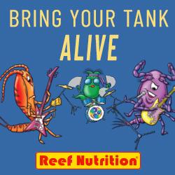 Reef Nutrition – 250