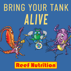 Reef Nutrition – 250