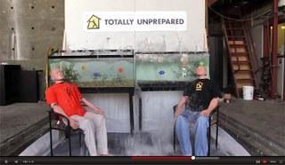 7.3 Earthquake vs. 60 gallon aquarium