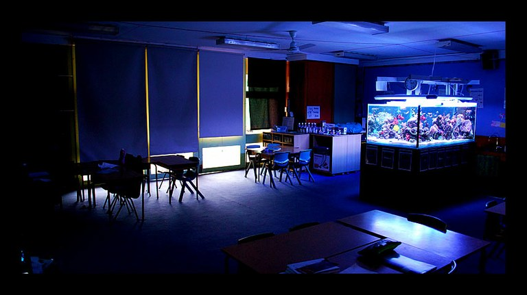 A Classroom Dreams Are Made Of
