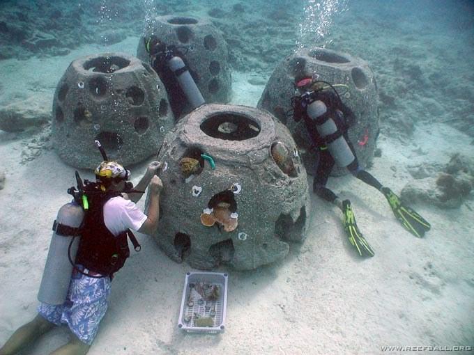 Kota Kinabalu (Malaysia) plants 200 Reef Balls