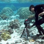 Stanford drones open way to new world of coralresearch