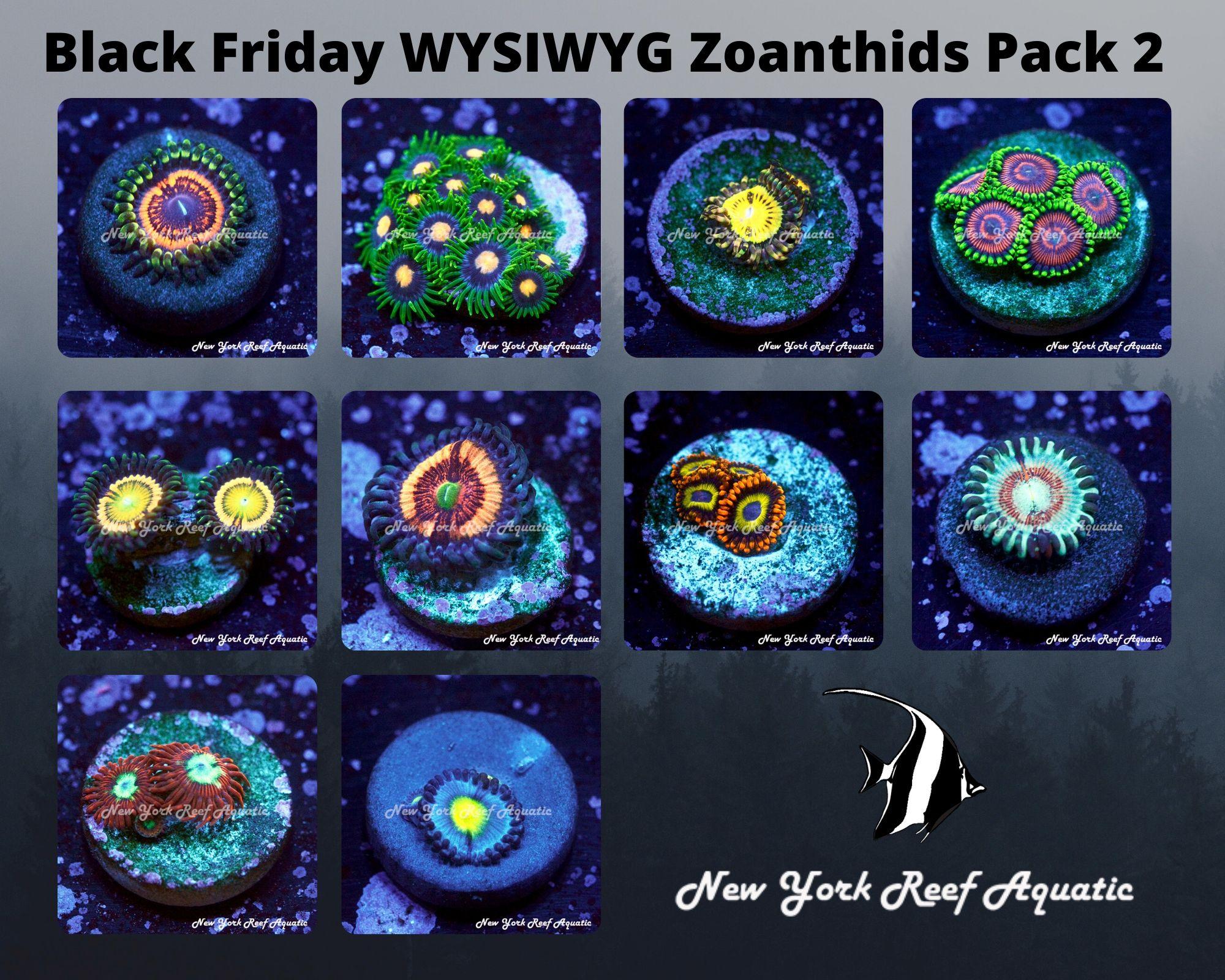 Zaonthids Pack 2.jpg