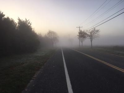Foggy road.jpg