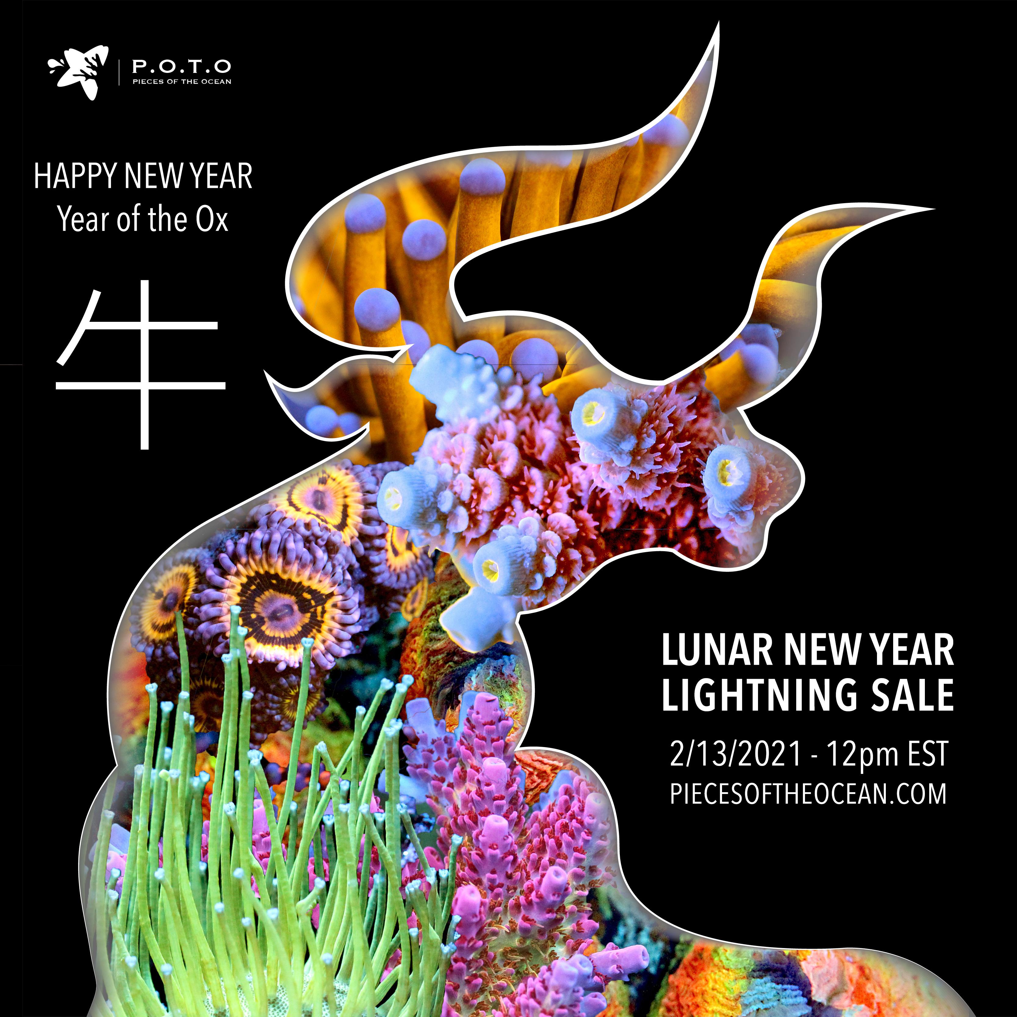CNY-2021-LS.jpg