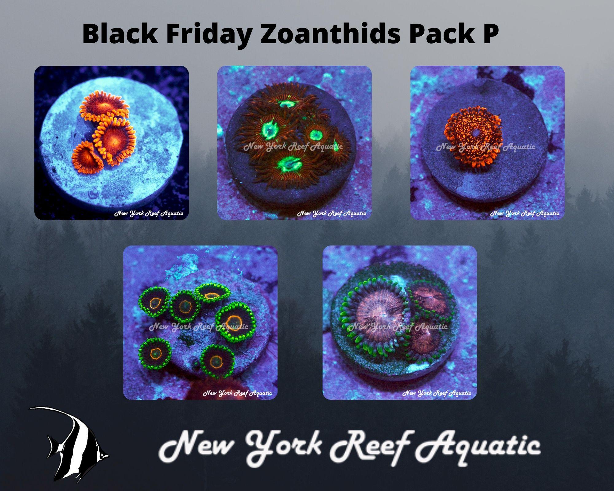 Zoanthids Pack P.jpg