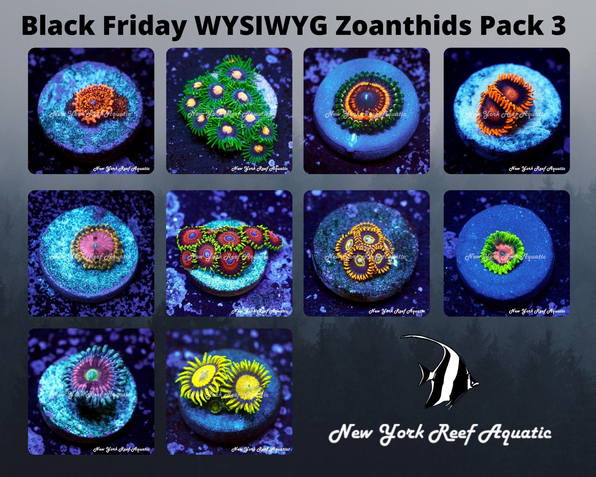 Zoanthids Pack 3.jpg