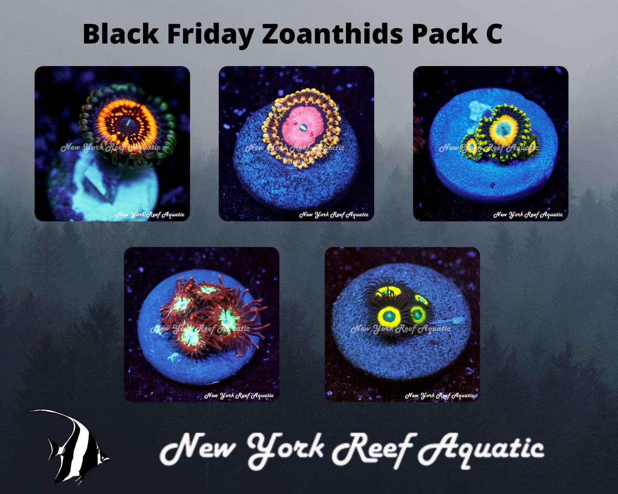 Zoanthids Pack C.jpg