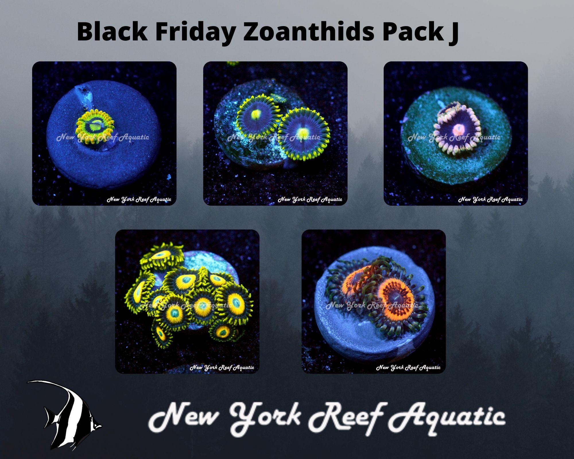 Zoanthids Pack J.jpg
