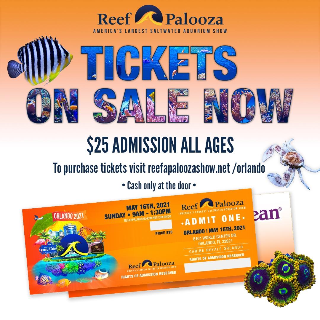 orlando2021_cariberoyale_ticketsonsalenow1x1.jpg
