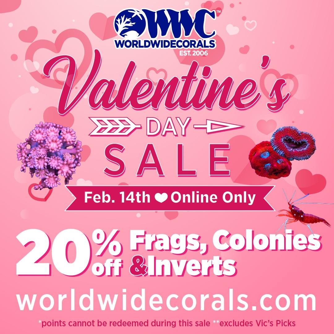 valentines_day_sale2021_SM1x1_update5.jpg