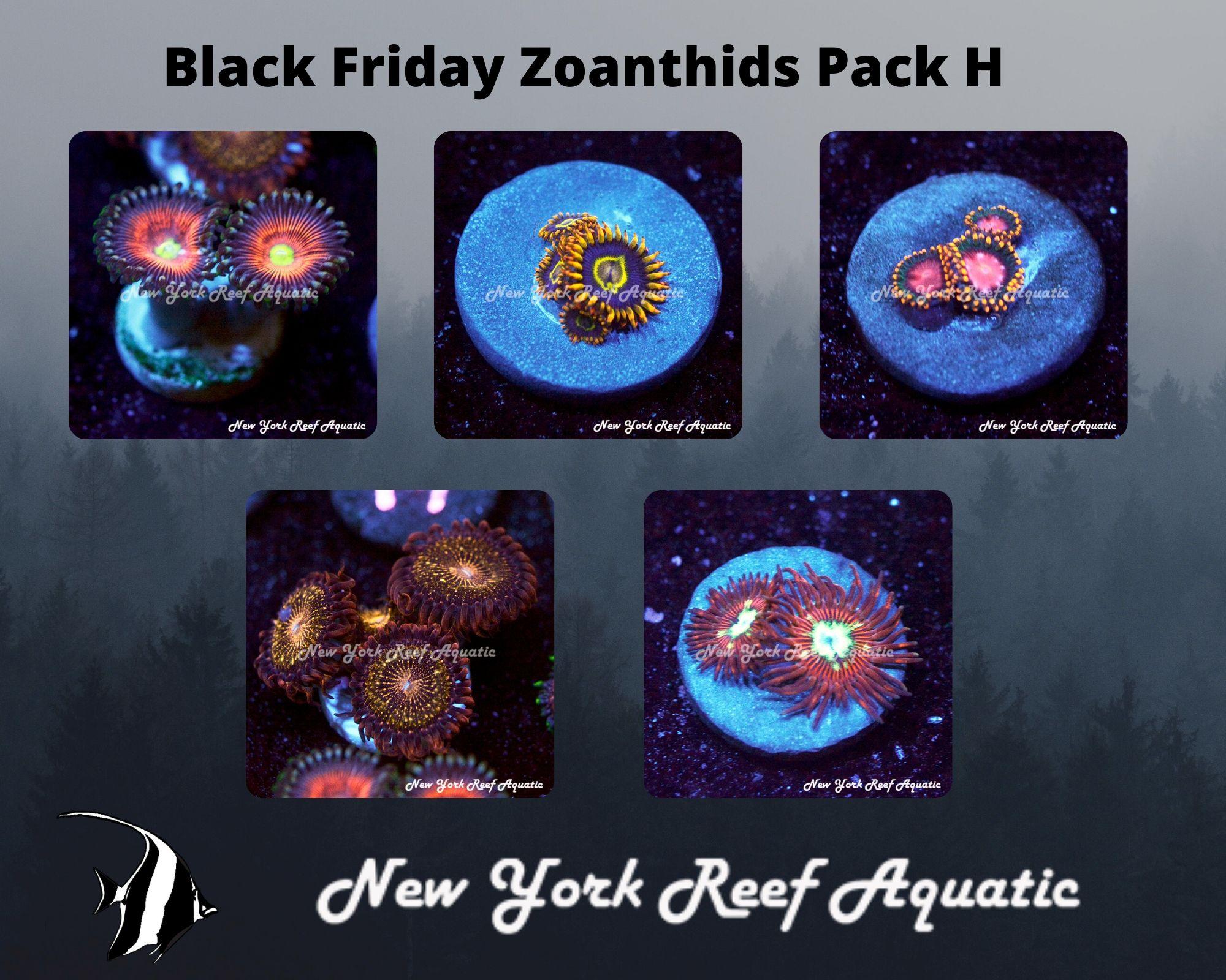 Zoanthids Pack H.jpg
