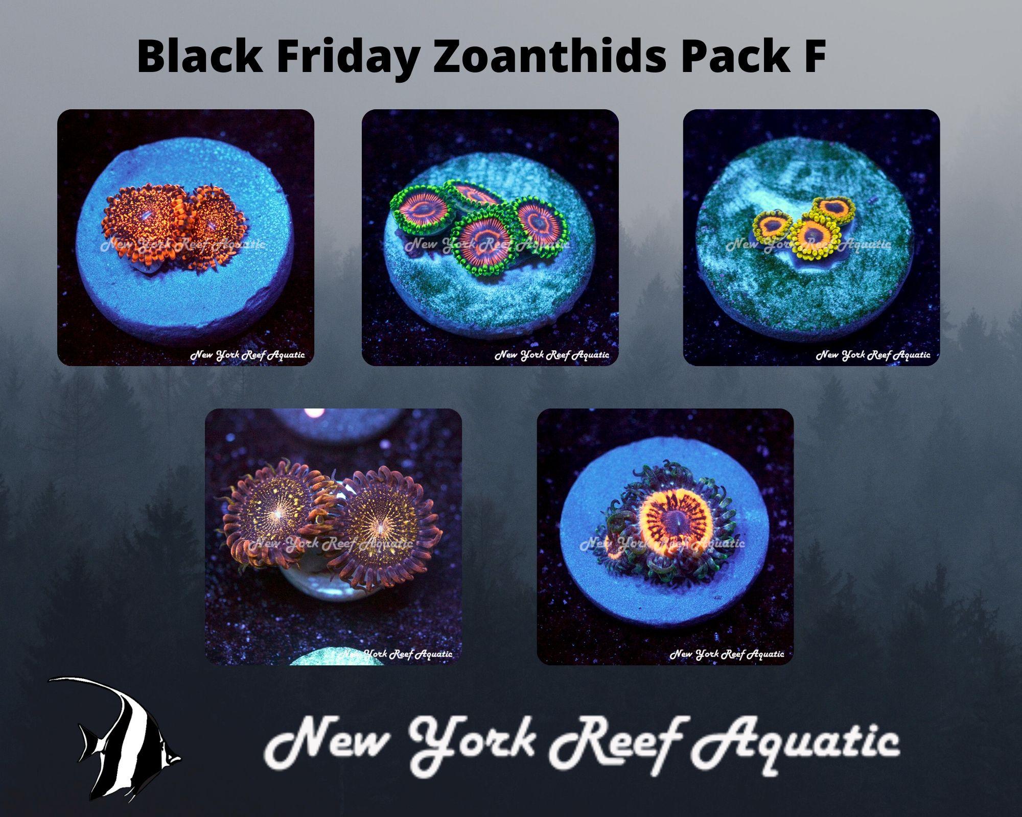 Zoanthids Pack F.jpg