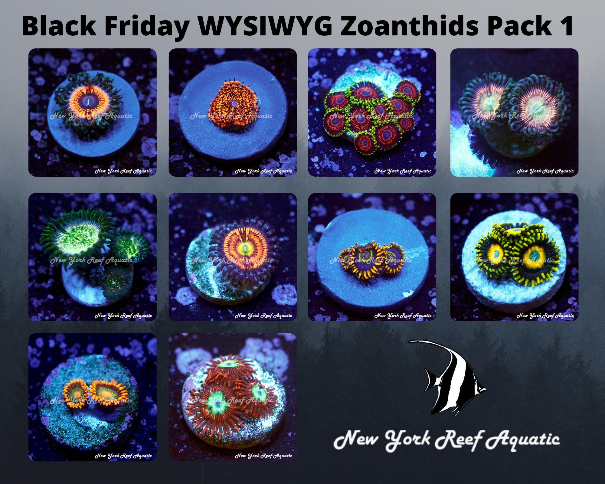 Zoanthids Pack 1.jpg