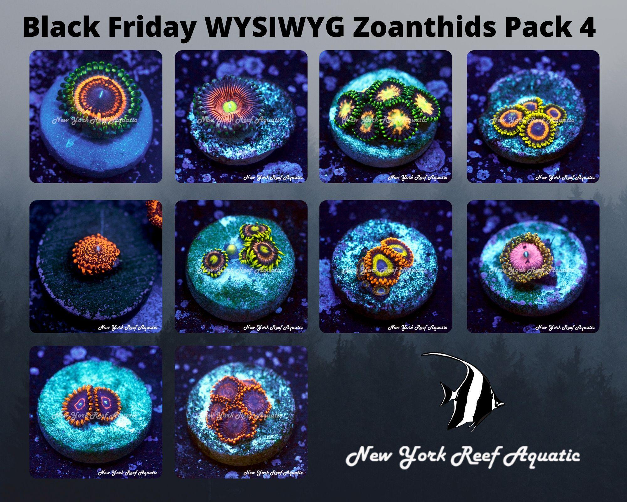 Zoanthids Pack 4.jpg