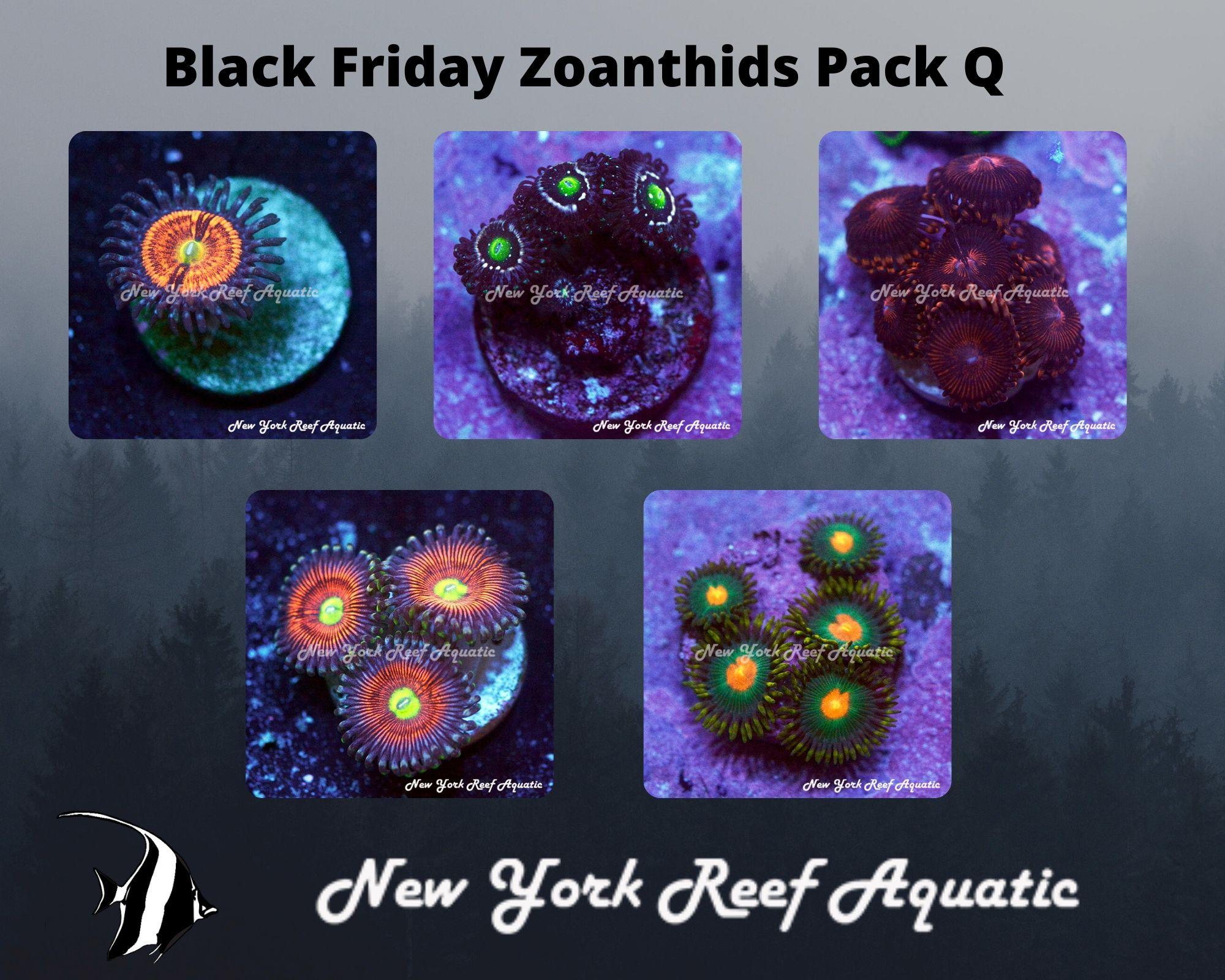 Zoanthids Pack Q.jpg