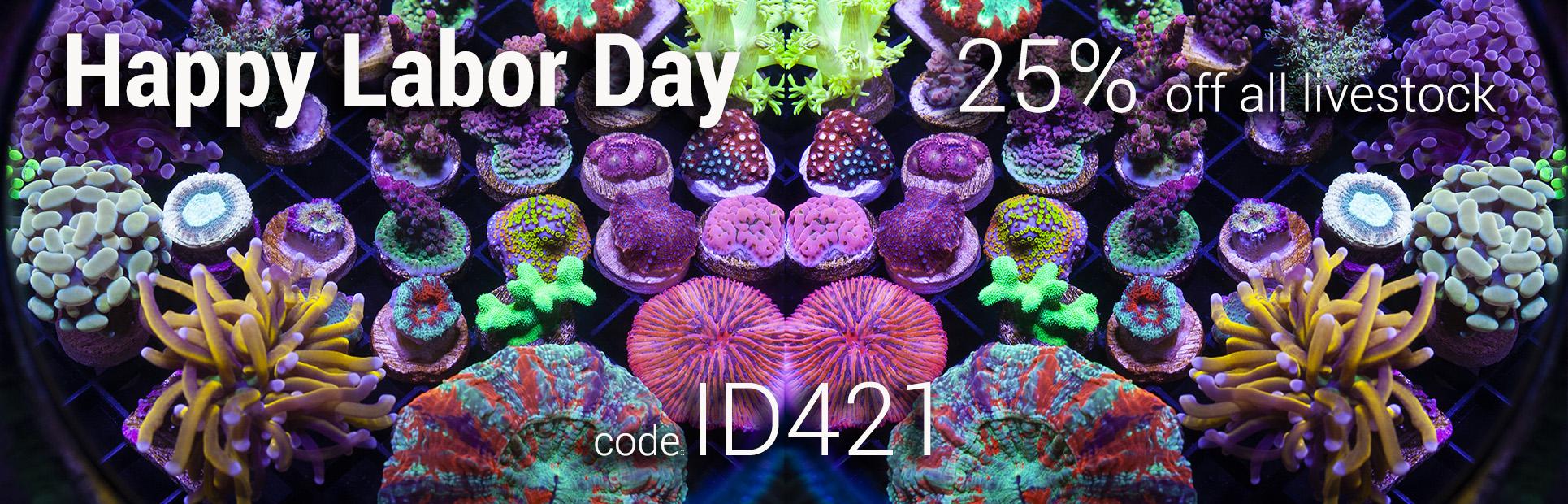 ID421-labor-day-sale.jpg