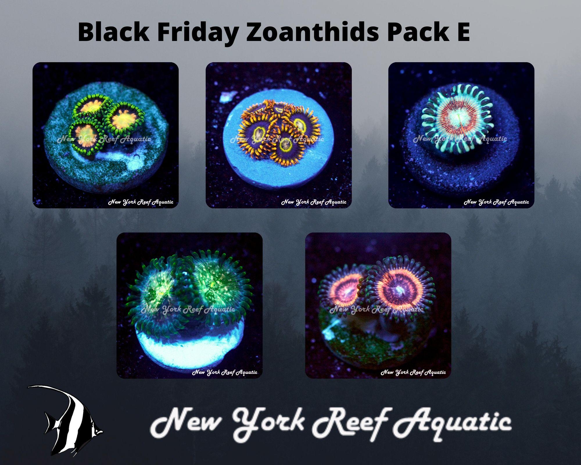 Zoanthids Pack E.jpg